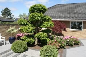 Gårdhave i Esbjerg etableret efter haveplan / havetegning fra Havearkitekt Arne Thomsen. Belægninger RBR Harmoni. Beplantning med rhododendron , bonsaitræer, japanske dværgahorn. mv