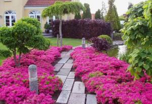 Havearkitektens egen have