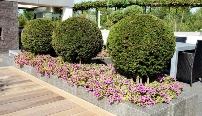 Unikt haveanlæg med launge og udekøkken