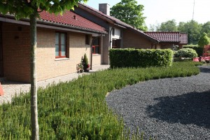 Havemiljø med spændende linier tegnet af havearkitekt Arne Thomsen tlf. 2172 4462